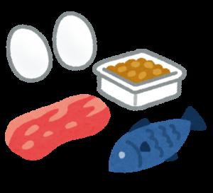 イラストタンパク質